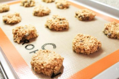 oatmeal choc chip (1 of 7)