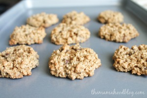 oatmeal choc chip (6 of 7)
