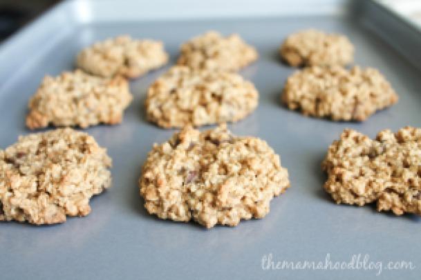 oatmeal choc chip (6 of 7)